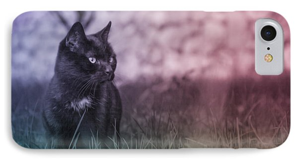 Black Cat IPhone Case by Silvia Bruno