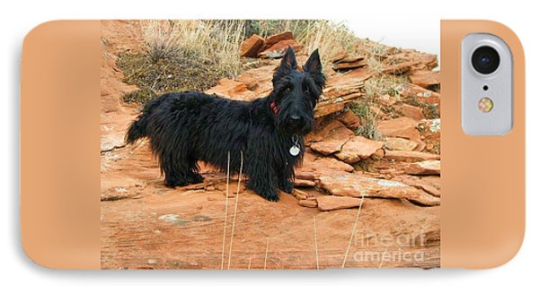 Black Dog Red Rock Phone Case by Michele Penner