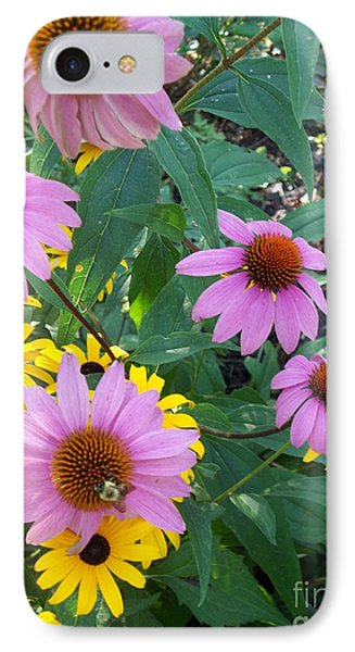 Black Eye Susans And Echinacea IPhone Case by Eric  Schiabor