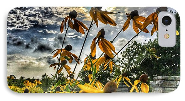 IPhone Case featuring the photograph Black Eyed Susan by Sumoflam Photography