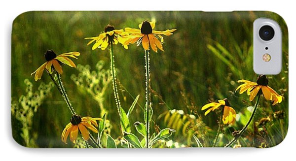 IPhone Case featuring the photograph Black Eyed Susans In The Wild by Jim Vance