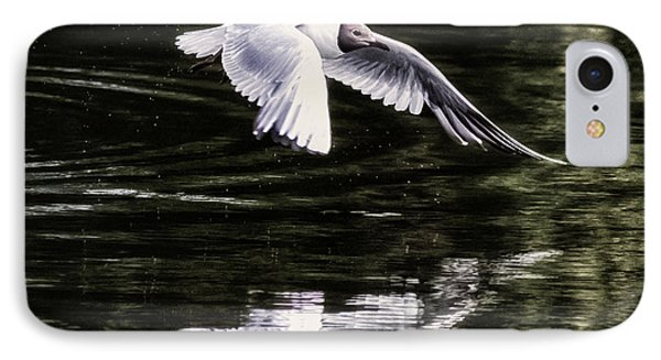 Black Headed Gull IPhone Case by Martin Newman