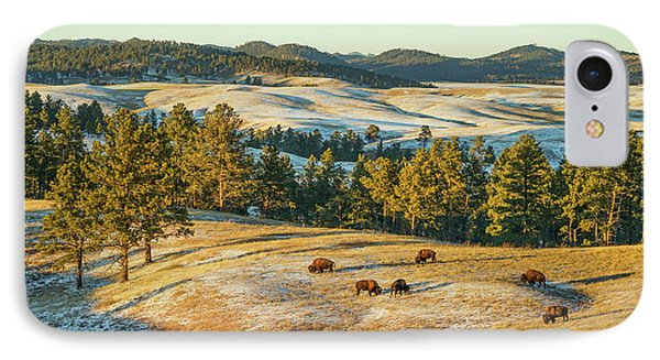 Black Hills Bison Before Sunset Phone Case by Bill Gabbert