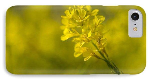 Black Mustard 3299 IPhone Case