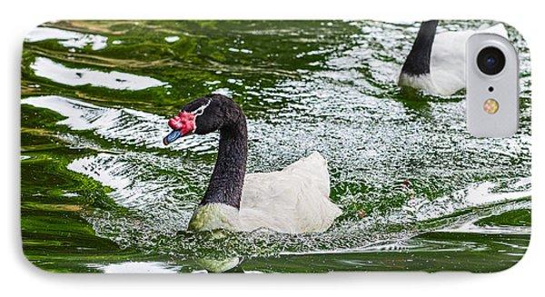 Black Neck Swan Swim IPhone Case by Jamie Pham