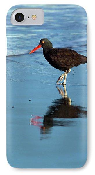 Black Oystercatcher Phone Case by Randall Ingalls