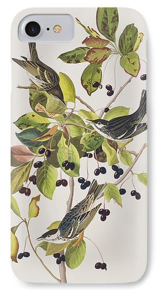 Black Poll Warbler IPhone Case by John James Audubon