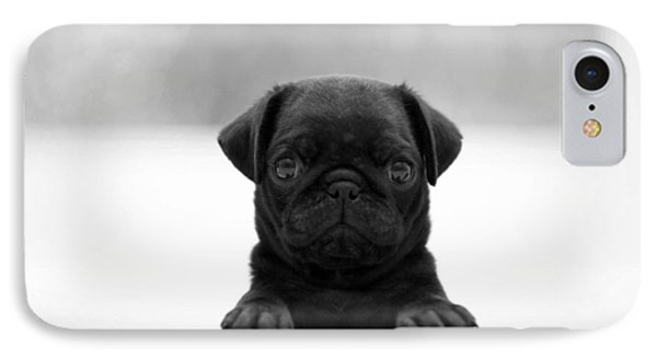 Black Pug IPhone Case by Sumit Mehndiratta