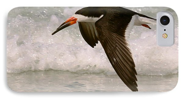 Black Skimmer Flight IPhone Case by Myrna Bradshaw