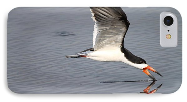 Black Skimmer And Reflection IPhone Case