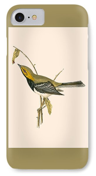 Black Throated Warbler IPhone Case by English School