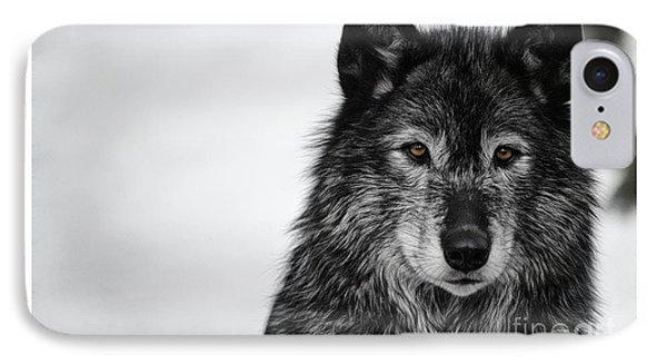 Black Wolf I IPhone Case by Brad Allen Fine Art