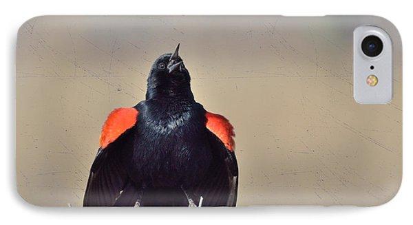 IPhone Case featuring the photograph Blackbird Singing by Kae Cheatham