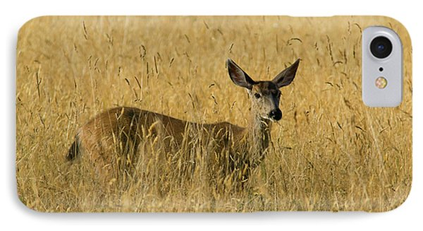 Blacktail Deer In Tall Grass Phone Case by Randall Ingalls