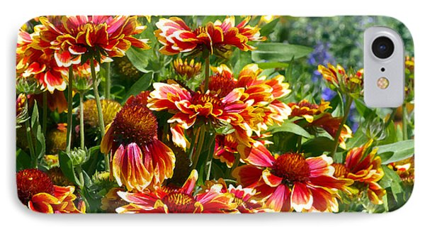 Blanket Flowers IPhone Case by Sharon Talson