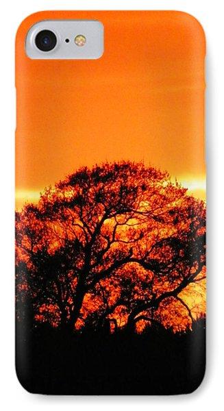 Blazing Oak Tree Phone Case by Karen Wiles