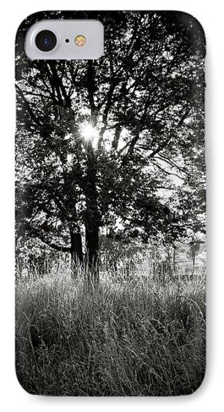 Blazing Tree IPhone Case