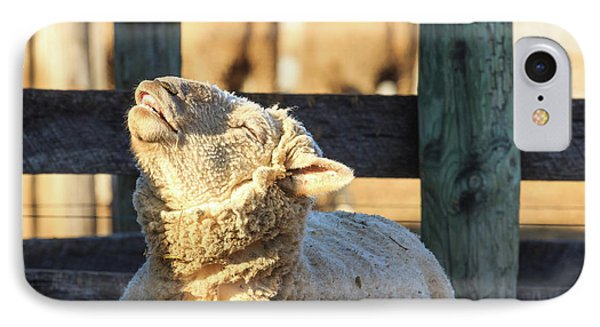 Bleating Sheep IPhone Case