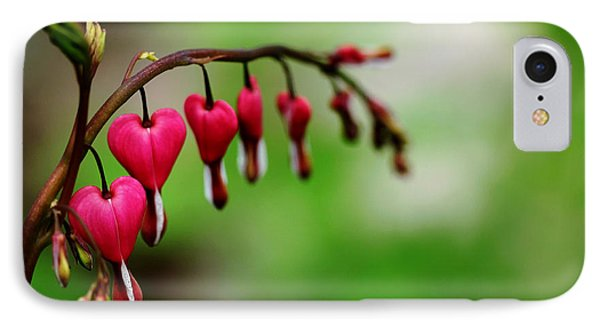IPhone Case featuring the photograph Bleeding Hearts Flower Of Romance by Debbie Oppermann