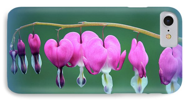 Bleeding Hearts IPhone Case by Jessica Jenney