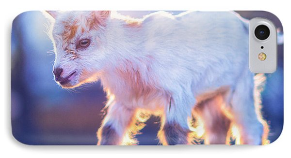 Little Baby Goat Sunset IPhone Case by TC Morgan