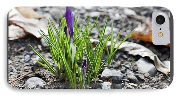 IPhone Case featuring the photograph Bloom Awaits by Jeff Severson