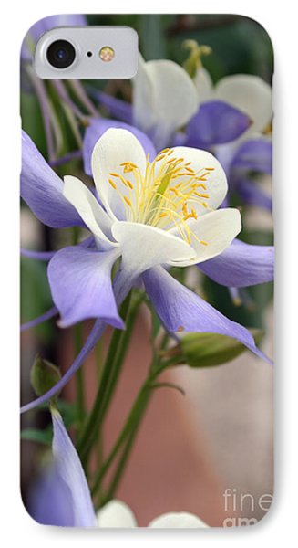 Blooming Columbine IPhone Case by Andrew Serff