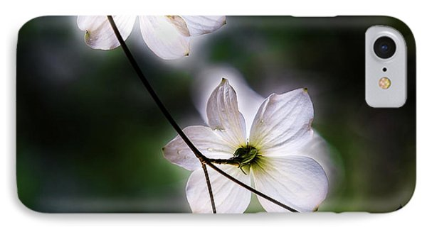 Yosemite National Park iPhone 7 Case - Blooming Dogwoods In Yosemite 2 by Larry Marshall