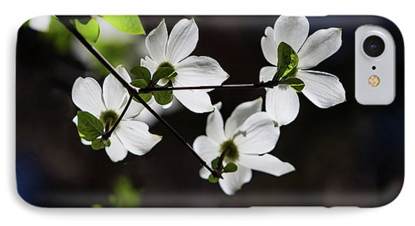 Yosemite National Park iPhone 7 Case - Blooming Dogwoods In Yosemite 4 by Larry Marshall