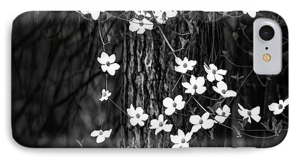 Yosemite National Park iPhone 7 Case - Blooming Dogwoods In Yosemite Black And White by Larry Marshall