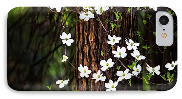 Yosemite National Park iPhone 7 Case - Blooming Dogwoods In Yosemite by Larry Marshall