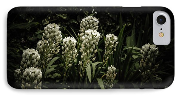 IPhone Case featuring the photograph Blooming In The Shadows by Marco Oliveira