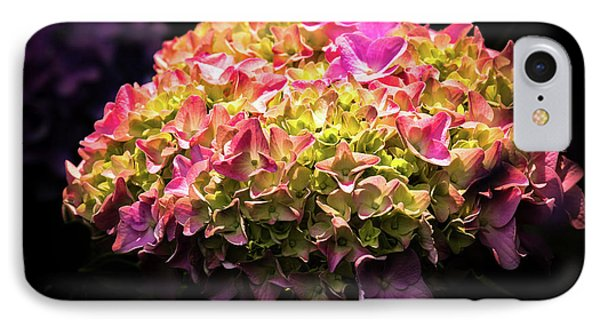 Blooming Pink Hydrangea IPhone Case by Onyonet  Photo Studios