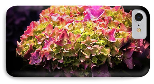 IPhone Case featuring the photograph Blooming Pink Hydrangea by Onyonet  Photo Studios