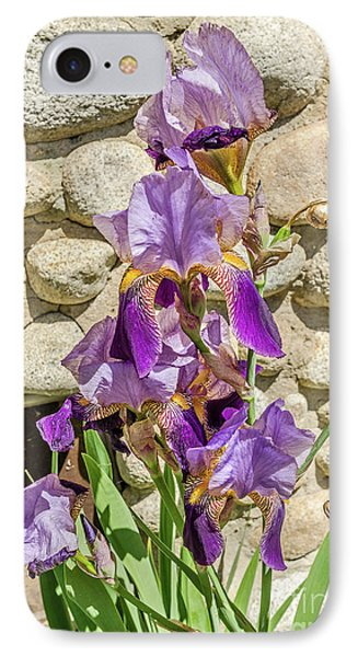 IPhone Case featuring the photograph Blooming Purple Iris by Sue Smith