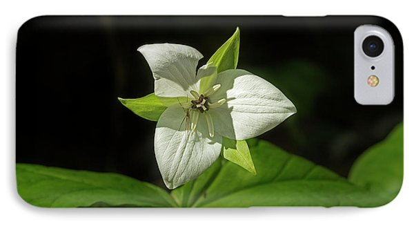 IPhone Case featuring the photograph Blooming Trillium by Mike Eingle