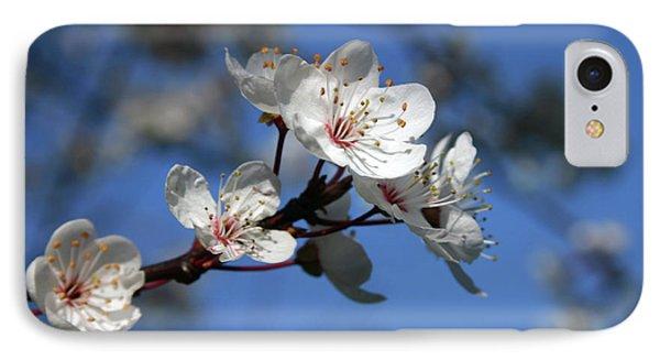 Blossom IPhone Case by Martina Fagan