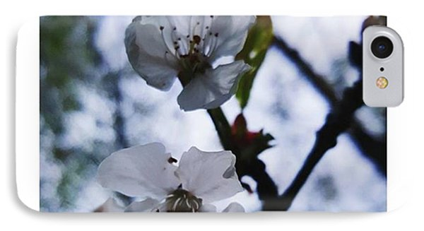 #blossom #spring #macro #flower #pretty Phone Case by Natalie Anne