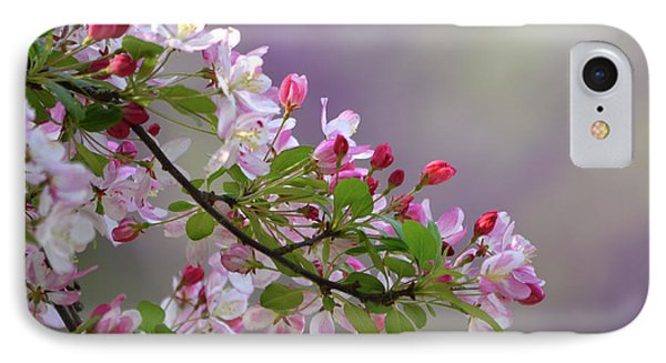 IPhone Case featuring the photograph Blossoms And Bokeh by Ann Bridges