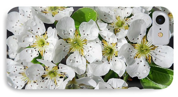 IPhone Case featuring the photograph Blossoms by Elvira Ladocki