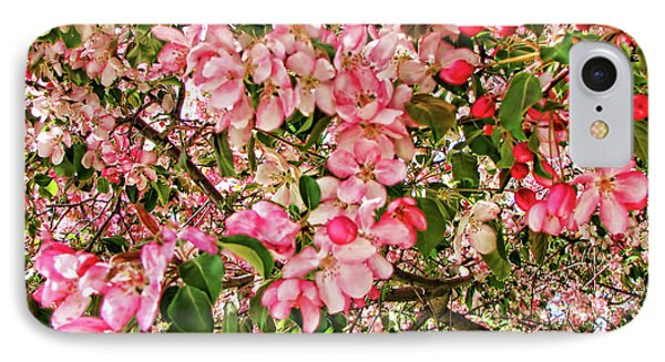 IPhone Case featuring the photograph Blossoms by Traci Cottingham