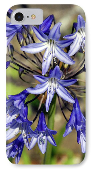 Blue Allium IPhone Case