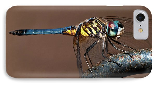 Blue And Gold Dragonfly IPhone Case by Christopher Holmes