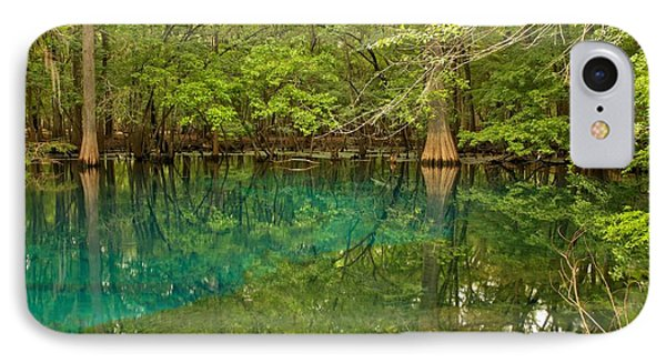 Blue And Green Waters At Manatee IPhone Case by Adam Jewell
