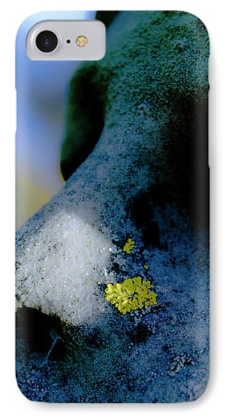 Blue Angel Face II IPhone Case by Grebo Gray