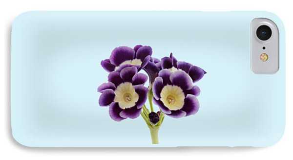 IPhone Case featuring the photograph Blue Auricula On A Transparent Background by Paul Gulliver