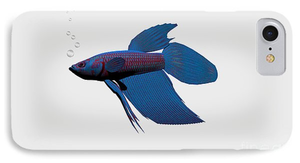 Blue Betta IPhone Case by Corey Ford