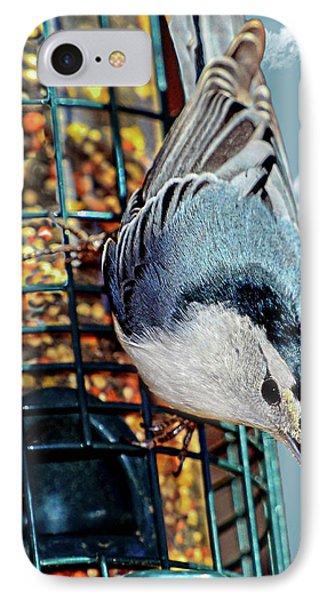Blue Bird On Feeder IPhone Case by Susan Leggett