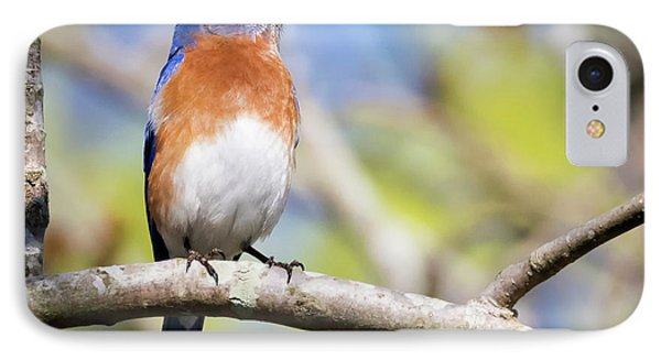IPhone Case featuring the photograph Blue Bird by Ricky L Jones
