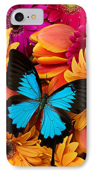 Blue Butterfly On Brightly Colored Flowers IPhone Case by Garry Gay